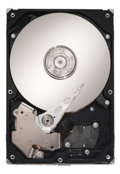 Dysk Barracuda 7200.10© Seagate