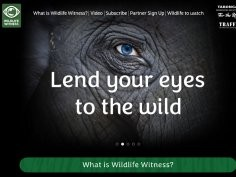 Wildlife Witness