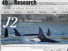 Center for Whale Research, CWR